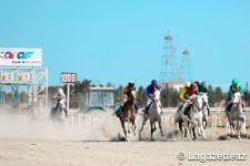Parade sur les chevaux du Karabagh en l'honneur de la mission de libération de l'armée azerbaïdjanaise à Bakou (PHOTOS/VIDEO) - Gallery Thumbnail