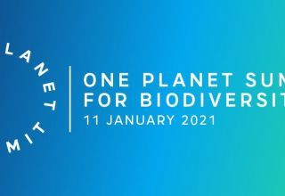 La France organise un One Planet Summit pour la biodiversité le 11 janvier 2021 à Paris