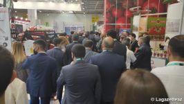 Le 14e Salon international de l'agriculture « Caspian Agro-2021 » et le 26e Salon international de l'industrie alimentaire « InterFood Azerbaïdjan-2021 » ouvrent leurs portes à Bakou - Gallery Thumbnail